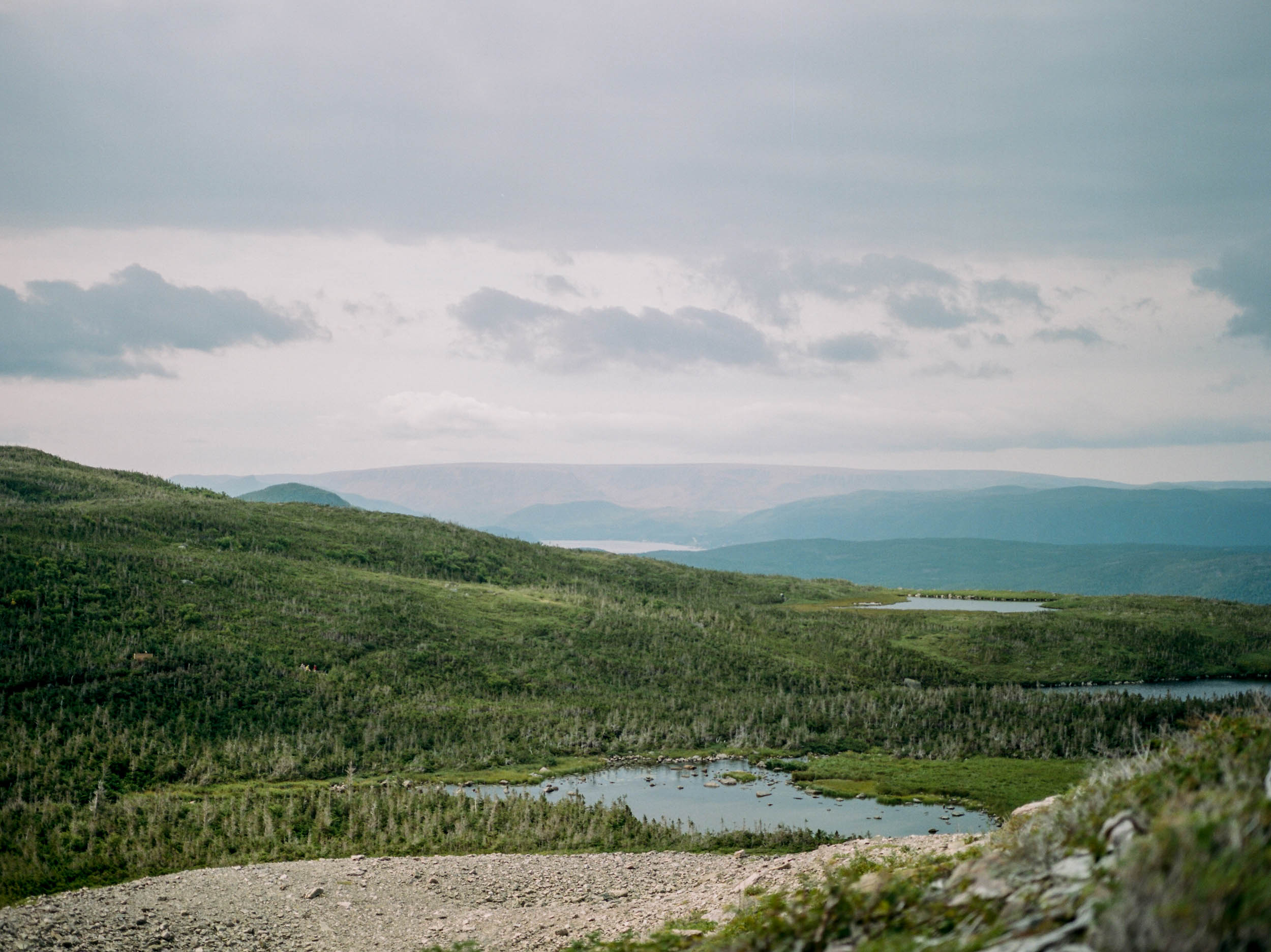 Travel_Newfoundland_MeganHaley_007